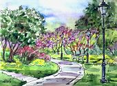 Park Lilac Garden, Watercolor Illustration. Landscape Of The Park With A Blossoming Lilac, Bench And poster