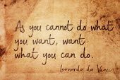 As You Cannot Do What You Want, Want What You Can Do - Ancient Italian Artist Leonardo Da Vinci Quot poster