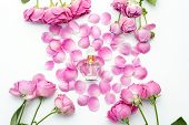 Perfume Bottle With Flower Petals On White Background. Perfumery, Cosmetics, Fragrance Collection. poster