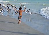 Boy Chasing Birds