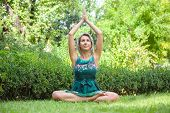 The Girl Practicing Yoga And Practicing Yoga Postures, Amazing Yoga Postures In Grass poster