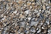 stock photo of mica  - Mica in the mountains summer background and texture - JPG