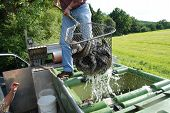 foto of brook trout  - trout in a net being put into a lake - JPG