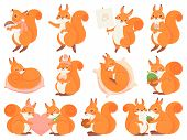 Cute Squirrel Cartoon Mascot. Couple Squirrels Love, Squirrel With Nut, Mushroom And Coffee Cup. Fun poster