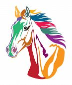 Colorful Decorative Contour Portrait Of Beautiful Running Horse With Long Mane, Looking  In Profile. poster