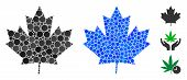 Maple Leaf Mosaic Of Small Circles In Various Sizes And Color Tones, Based On Maple Leaf Icon. Vecto poster