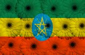Stylized  National Flag Of Ethiopia    With Gerbera Flowers