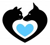 cat and dog in the heart