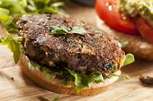 foto of portobello mushroom  - Homemade Organic Vegetarian Mushroom Burger with tomato and guacamole - JPG