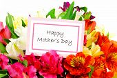 stock photo of day-lilies  - Happy Mothers Day tag among a bouquet of flowers - JPG