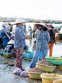 Vietnamese Fish Market