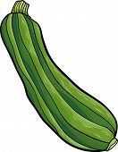 Zucchini Vegetable Cartoon Illustration