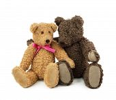 Two teddy bears  isolated on white background
