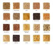 Cereals collection with titles isolated on white background