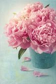 image of vase flowers  - Peony flowers in a vase - JPG