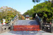 Sunny Day In Kamakura Park