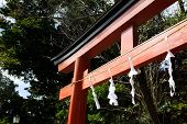 Torii With White Faithful Paper In Shrine