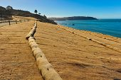 Walking Trail Next To Ocean With Erosion Control Mesh