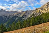 Mount Olympus Landscape
