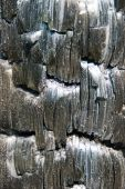 Charcoal Surface Texture.