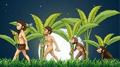 Illustration of the evolution of man