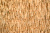 Dry Reed Straw Background