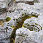Weathered Limestone Rock