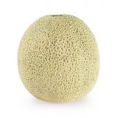 Melon (isolated On White)