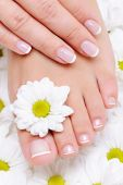 picture of pedicure  - female hand with beautiful french manicure on the pure and clean foot - JPG