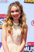 LOS ANGELES - APR 26:  Sabrina Carpenter at the 2014 Radio Disney Music Awards at Nokia Theater on April 26, 2014 in Los Angeles, CA