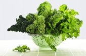 foto of roughage  - Dark green leafy fresh vegetables in metal colander - JPG