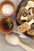 stock photo of morel mushroom  - Fresh spring morel mushrooms on a plate