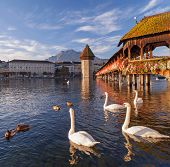 stock photo of chapels  - Lucerne Switzerland the Chapel Bridge in the early morning - JPG