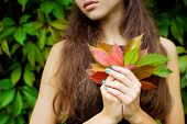 fallen autumn leaves in the hands of a beautiful girl with full lips
