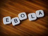 Ebola Virus Concept
