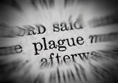 Plague Text From Bible