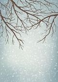 Winter Vector Tree Branches