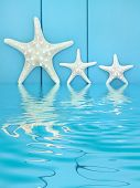 Starfish seashells on wooden blue background with reflection in water.