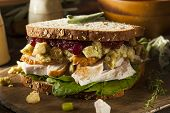 Homemade Leftover Thanksgiving Dinner Turkey Sandwich