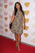 LOS ANGELES - OCT 16:  Sanaa Lathan at the XXIV Karat Launch Party at Beverly Hilton Hotel on October 16, 2014 in Beverly Hills, CA