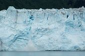 picture of mear  - Calving ice falls from Alaska - JPG