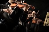 stock photo of orchestra  - Violin orchestra performing on stage on dark background - JPG