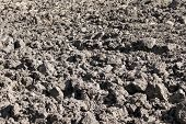 Arable Field With Black Soil