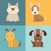 foto of petting  - Vector set of cartoon dogs in flat style  - JPG