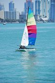 Small Sailing Catamaran