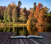 Beautiful Landscape Of Autumn Trees And Colors Reflected In Lake Conceptual Book Image