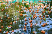 colored balls on the water