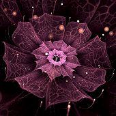 Violet Fractal Flower With Violet Details On Petals, On White