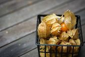 Physalis fruit on a table
