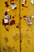Grunge Old Yellow Wood Wall Texture Background